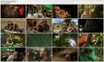 Wyprawa na Now± Gwineê / Expedition New Guinea (2009)  PL.TVRip.XviD / Lektor PL